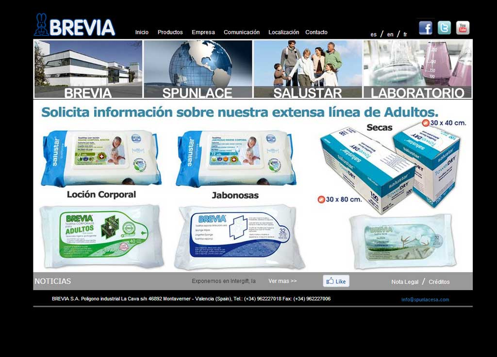Web Grupo Brevia